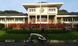 my polygon n unpad