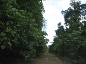 Jalan Tikno