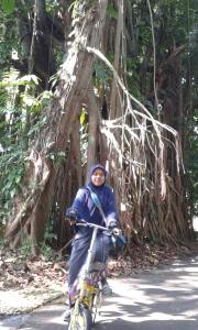 @ Kebun Raya Bogor