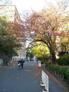 @ Kyoto University