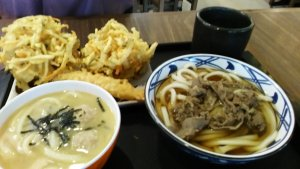 Udon & Tempura