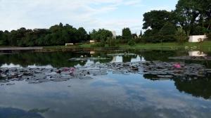 Danau Ecopark BIG