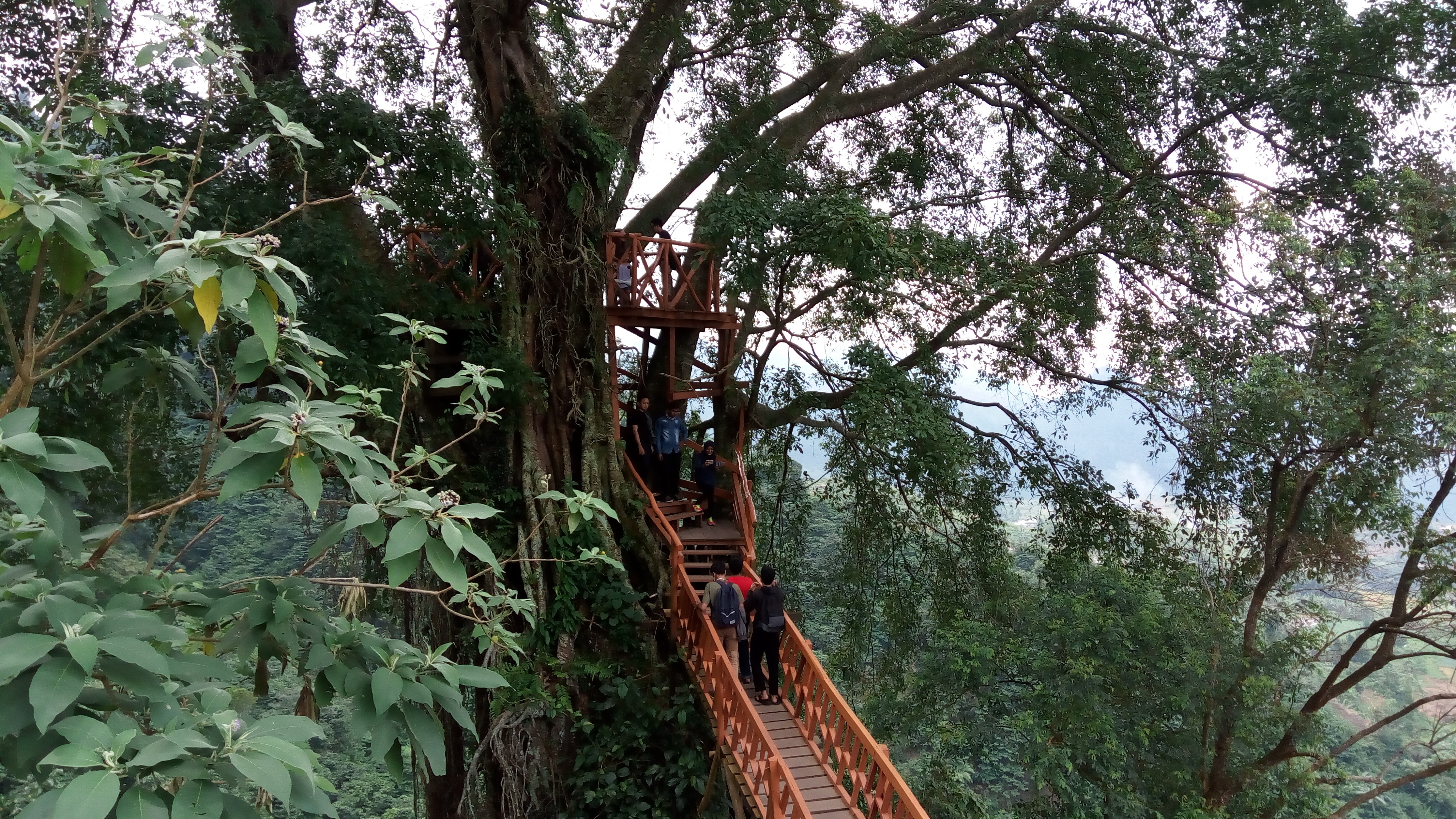 Rumah Pohon Curug Ciherang Family Travel Culinary Blog